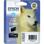 Consommable compatible Epson T0965.